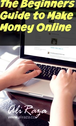 beginners guide how to make money online