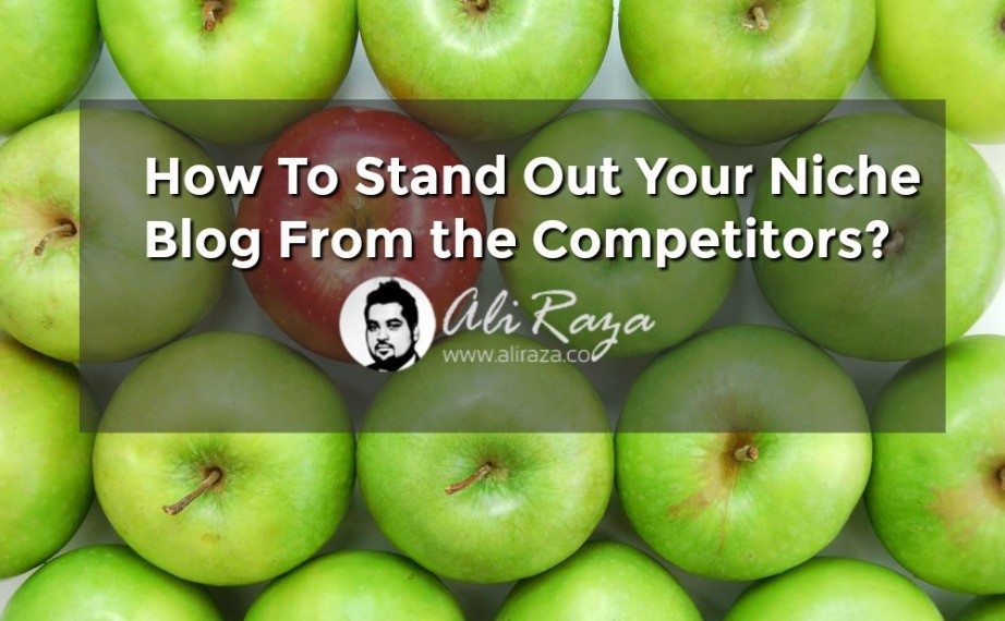 How To Stand Out Your Niche Blog From the Competitors