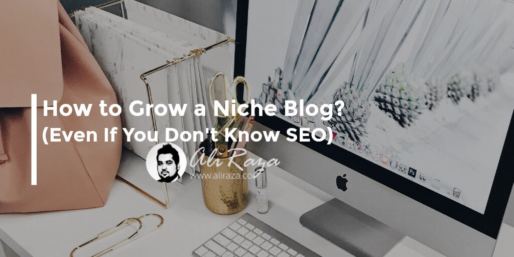 How to Grow a Niche Blog (Even If You Don't Know SEO)