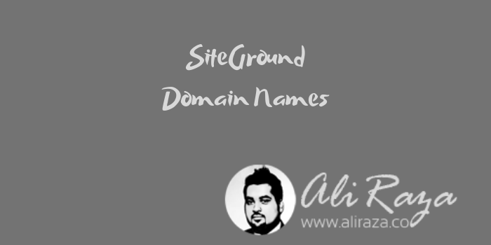 SiteGround Domain Names